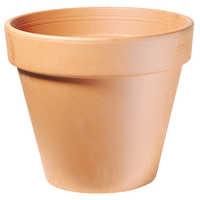 Outdoor Terracotta Pot