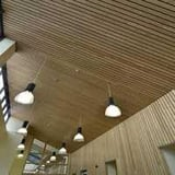 Ceiling plank