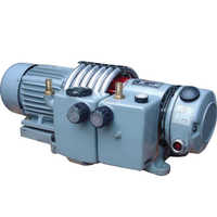 Dry vacuum pressure pumps
