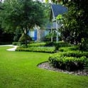 Roof Landscaping Services