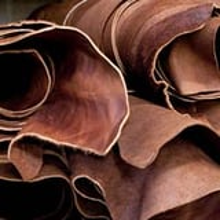 Animal leather