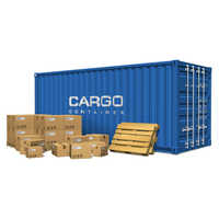 Cargo Surveying Services