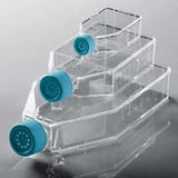 Cell culture bottles