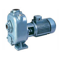 Priming Sewage Pump