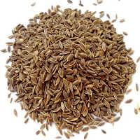 Medicinal Seeds