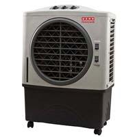 Usha Air Cooler