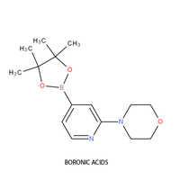 Boronic Acids