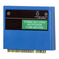 Flame amplifier