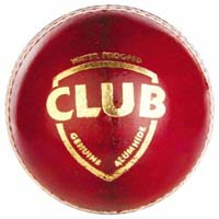 Sg cricket ball