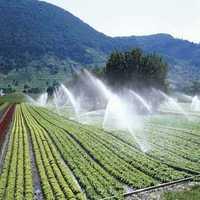 Agricultural Sprinklers
