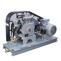 Elgi oil free air compressor