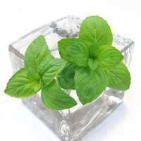 Herbal liquids