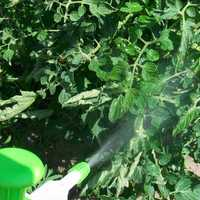 Revive insecticides
