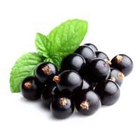 Black currant flavor
