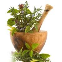 Herbal rejuvenators