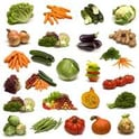 Vegetable Seed