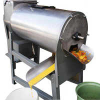 Fruit pulp machine