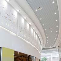 Gypsum ceiling works