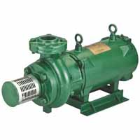 Texmo Water Pump