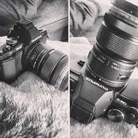 Digital photographer