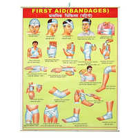 First Aid Chart