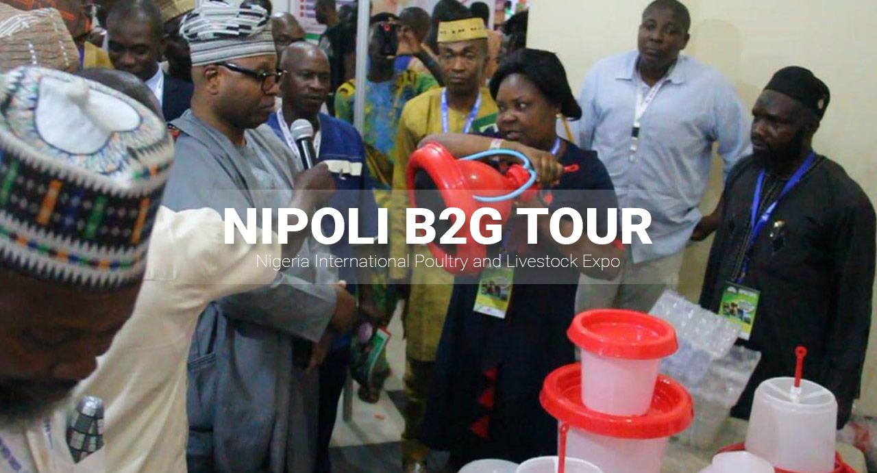 NIPOLI EXPO 2019