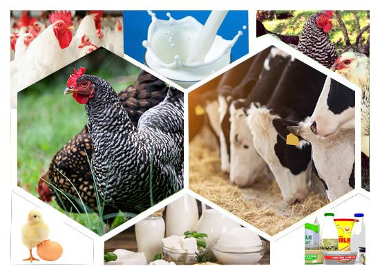 United Agri & Dairy Tech 2018